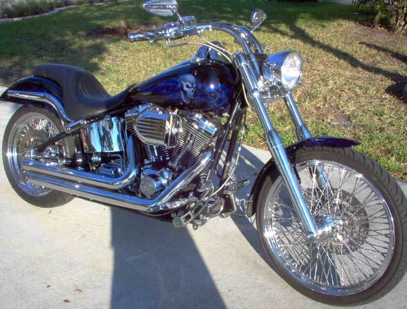 Custom-Painted Harley-Davidson Motorcycles 800 x 608 · 83 kB · jpeg